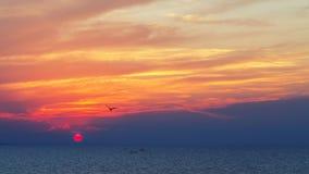 在沿海的美好的日落 免版税库存照片