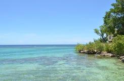 在沿牙买加海岸线的树紧贴的家 免版税库存图片