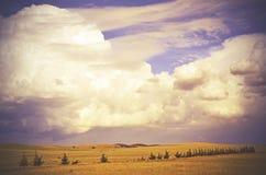 在沿途有树的小山的美好的cloudscape 免版税图库摄影