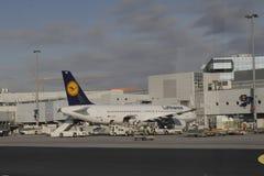 在法兰克福机场的汉莎航空公司飞机 免版税库存照片