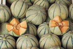 在法国市场上的甜瓜 库存图片