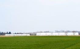 在法国村庄附近的温室在早期的春天 免版税库存图片