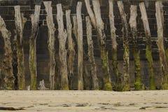 在法国海滩的木栅在La不列塔尼 免版税库存图片