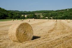 在法国领域的干草捆 免版税库存图片