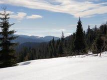 在波兰冬时的山 库存图片