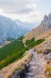 在波兰山的一串足迹 库存照片