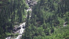 ?? 在波兰Tatras的山瀑布 影视素材