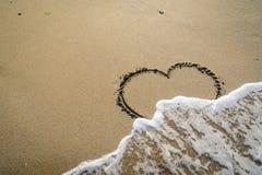在波浪洗涤的沙子的牡鹿 库存照片