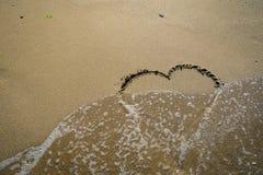 在波浪洗涤的沙子的牡鹿 免版税库存图片