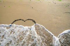 在波浪洗涤的沙子的牡鹿 免版税图库摄影