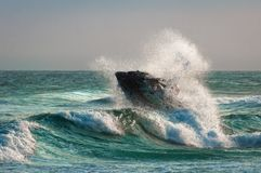 在波浪的喷气机滑雪在海洋 免版税库存照片