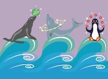 在波浪的马戏团动物。 免版税库存图片