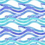 在波浪的鲸鱼 无缝的模式 水彩 库存图片