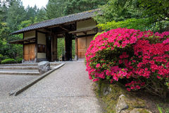 在波特兰日本人庭院的门入口 库存图片