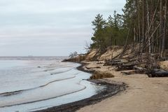 在波罗的海的冬天在里加 库存照片