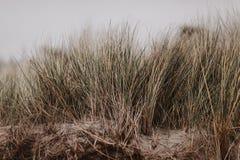 在波罗的海的喜怒无常和风暴日 免版税库存图片