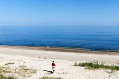 在波罗的海的夏天 免版税库存图片