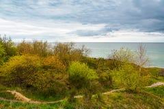 在波罗的海的岸的横向 库存照片