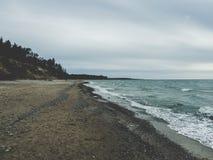 在波罗的海的岸的风景 免版税库存图片