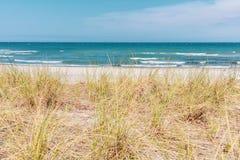 在波罗的海的沙丘的看法美好的天气的 免版税库存照片
