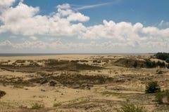 在波罗的海的沙丘 免版税库存照片