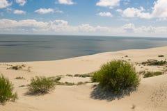 在波罗的海的沙丘 库存照片