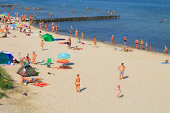 在波罗的海的海岸的夏天 免版税库存照片