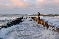 在波罗的海的海岸的风暴 免版税库存图片