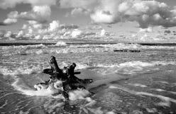 在波罗的海的秋季风暴, Kolobrzeg,波兰 库存图片