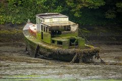 在泥泞的小河放弃的烂掉废船 免版税库存照片