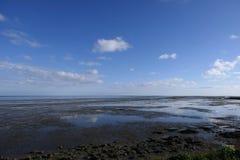 在泥滩的看法 免版税库存照片
