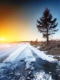 在泥潭的轮子轨道在冬天 图库摄影