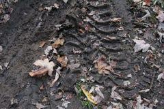 在泥的轮胎印刷品 免版税库存图片