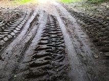 在泥的轮胎轨道 免版税图库摄影