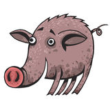 在泥盖的一头愉快的动画片猪 库存照片