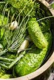 在泥罐的腌制的新鲜的黄瓜 免版税库存照片