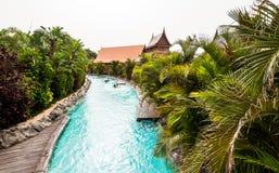 在泰国公园里面 特内里费岛 库存照片