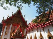 在泰国和树的寺庙 库存照片