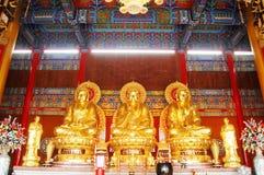 在泰国的汉语菩萨 免版税图库摄影