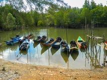 在泰国的美洲红树的小船。 图库摄影