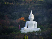 在泰国的菩萨雕象 库存图片