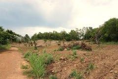 在泰国砍伐山林 免版税库存图片