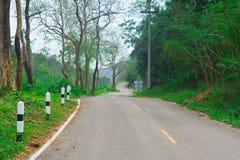 在泰国绿色树的农村路 免版税库存图片