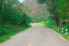 在泰国绿色树的农村路 库存照片