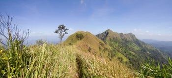 在泰国美丽风景的山 免版税库存照片