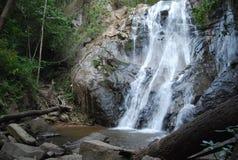 在泰国建立的森林中的惊人的自然瀑布 免版税库存图片