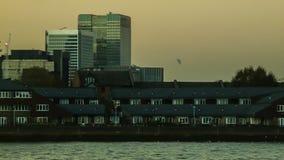 在泰晤士的海鸥金丝雀码头的,伦敦 股票录像