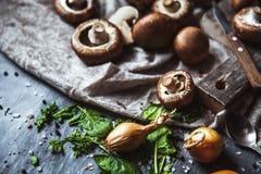 在洗碗布的皇家蘑菇 烹调盘 图库摄影