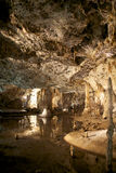 在洞Punkva, Moravian石灰岩地区常见的地形的钟乳石 免版税图库摄影