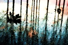 在洪水以后的反映 免版税图库摄影